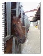 Stable-izer Spiral Notebook
