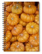 Stacked Mini Pumpkins Spiral Notebook