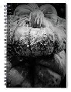 Stacked Pumpkins Spiral Notebook