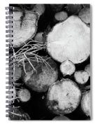 Stacked Wood Logs In Black And White Spiral Notebook