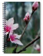 Stages Of Spring Spiral Notebook