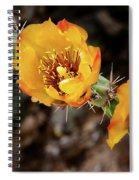 Staghorn Cactus Blossons Spiral Notebook