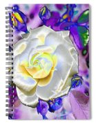Stained Glass Beauty Spiral Notebook