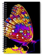 Stained Glass Butterfly Spiral Notebook