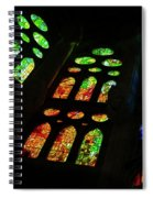 Stained Glass Windows -  Spiral Notebook