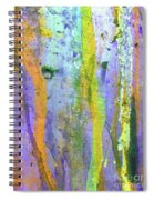Stains Of Paint Spiral Notebook