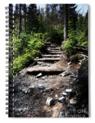 Stair Stone Walkway In The Forest Spiral Notebook