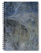 Stalked - Mountain Lion Spiral Notebook