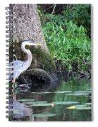 Stalked Spiral Notebook
