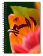Stamen And Sunlight Spiral Notebook