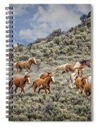 Stampede In The Sage Spiral Notebook