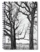 Stand Alones Spiral Notebook