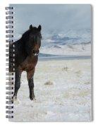 Stand Still  Spiral Notebook