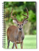 Stand Your Ground Spiral Notebook