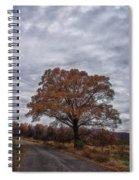 Standing Alone Spiral Notebook