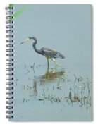Standing In The Marshes Spiral Notebook