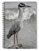 Standing Proud Spiral Notebook