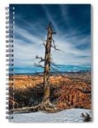 Standing Regardless Spiral Notebook