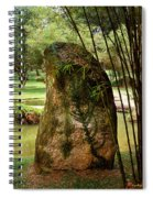 Standing Stone With Fern And Bamboo 19a Spiral Notebook