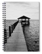 Standing Strong Spiral Notebook