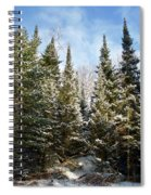 Standing Tall 4832 Spiral Notebook