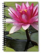 Standing Tall In The Pond Spiral Notebook