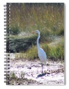 Standing There Spiral Notebook