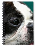 Stanley's Head Study Spiral Notebook