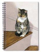 Stanzie Cat Spiral Notebook
