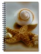 Star And Shells Spiral Notebook