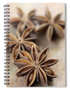 Star Anise  Spiral Notebook