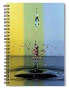 Star Birth Spiral Notebook