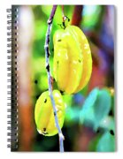 Star Fruit  Spiral Notebook