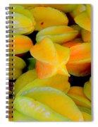 Star Fruit Spiral Notebook