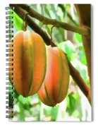 Star Fruit On The Tree Spiral Notebook