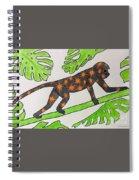 Star. Monkey  Spiral Notebook