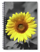 Star Of The Show - Standing Out Spiral Notebook