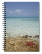 Star Paradise Spiral Notebook
