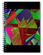 Starburst Spiral Notebook