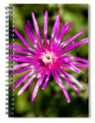 Starburst Of The Wildflowers Spiral Notebook