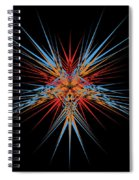 Starburst Spiral Notebook