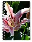Stardom Spiral Notebook