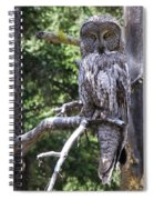 Stare Down Spiral Notebook