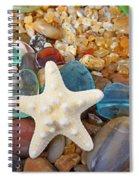 Starfish Art Prints Star Fish Seaglass Sea Glass Spiral Notebook
