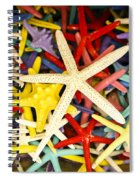 Starfish Dressed Up Spiral Notebook
