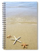 Starfish On Beach Spiral Notebook