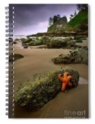Starfish On The Rocks Spiral Notebook