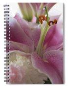 Stargazer Oriental Lilly Spiral Notebook