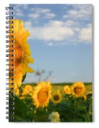 Staring Into The Sun Spiral Notebook