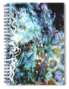 Starry Contribution 1 Spiral Notebook